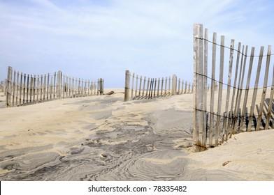 Sand Dune Fences on Windy Day