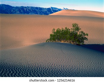 Sand Dune Formations in Death Valley National Park, California, USA