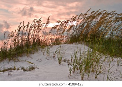 Sand dune and grasses under red sunset sky