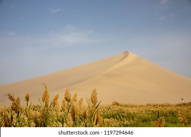 Sand dune and marsh at Singing Sand Mountain dunes of Taklamakan Desert, Dunhuang, China.