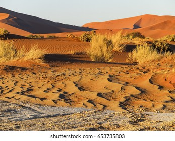 Sand dune in the Namib Naukluft National Park, Sesriem, Namibia