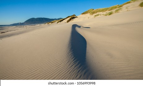 A sand dune on a beach on the Oregon coast with the sand being blown around by the wind
