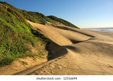 Sand dune on sea beach. Shot in Sodwana Bay Nature Reserve, KwaZulu-Natal province, Southern Mozambique area, South Africa.