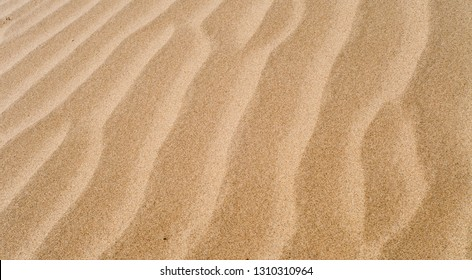 Sand dune texture and background