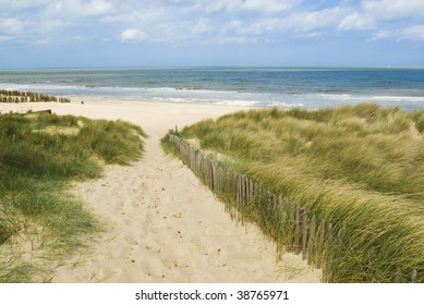 Sand dunes along the Belgian coast