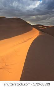 Sand Dunes in Altos Limpios. Lavalle, Mendoza, Argentina