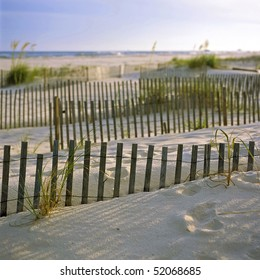 Sand dunes and beach grasses at sunset, Gulf Shores, Alabama.