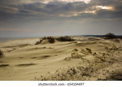 Sand dunes of the Curonian Spit