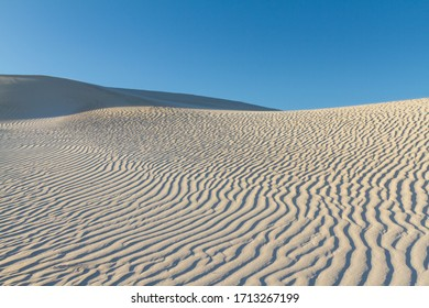 Sand Dunes at dawn, Cervantes, Western Australia