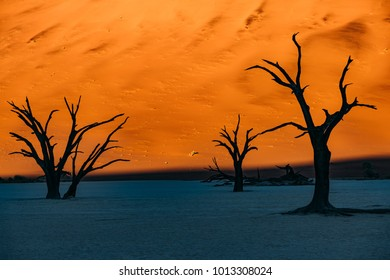 Sand Dunes and dead trees at Deadvlei, Sossusvlei, Namib Desert, Namibia, Africa