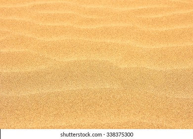 sand dunes of the desert