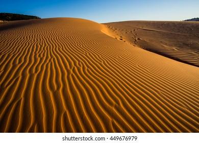 sand dunes at desert