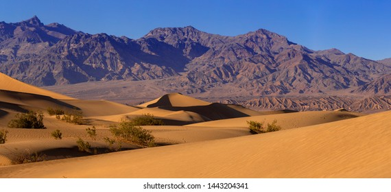 Sand dunes in a desert landscape in Death Valley California.  The vast barren land is dry and arid due to droughts result of global warming and climate change.