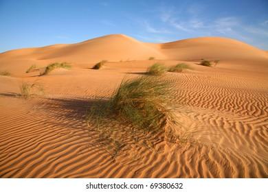 Sand Dunes in Mauritania.