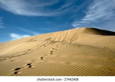 Qatar Desert Images, Stock Photos & Vectors | Shutterstock
