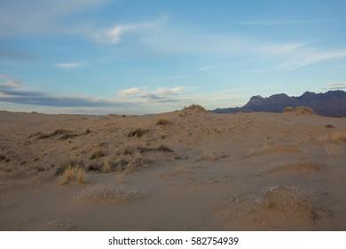 Sand Dunes in the Mojave Desert