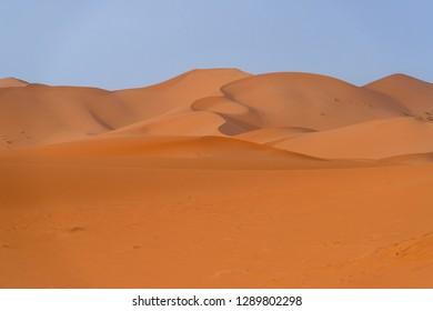 Sand dunes in the morning light in Merzouga desert, Morocco
