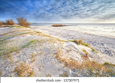 sand dunes on the beach by North sea, Netherlands