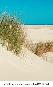 sand dunes on the beach by North sea, Germany (Norderney)