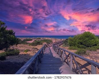 Sand dunes on the beach of La Barrosa in Sancti Petri, Cadiz, Spain.