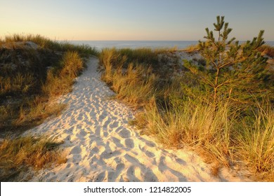 Sand dunes on the coast of the Baltic Sea, Kolobrzeg, Poland