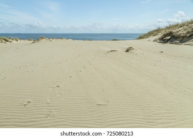 Sand dunes in the resort of Nida, near the Baltic Sea