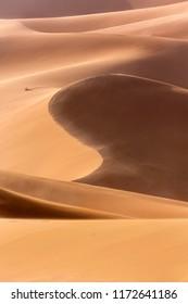 The sand dunes of the Sahara