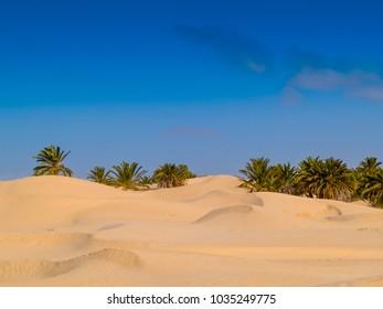 sand dunes in the sahara desert, blue sky, near Douz Tunisia Africa