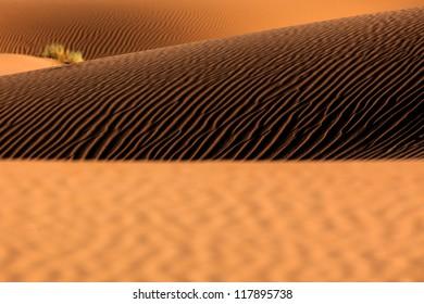 Sand Dunes in Sahara Desert, Morocco