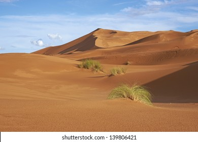 Sand dunes in the Sahara Desert of Morocco in North Africa