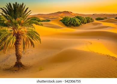 Sand dunes of the Sahara desert near Merzougha in Morocco