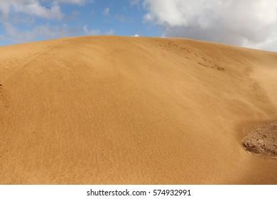 Sand dunes of the Sahara Desert, outside Layounne, Western Sahara