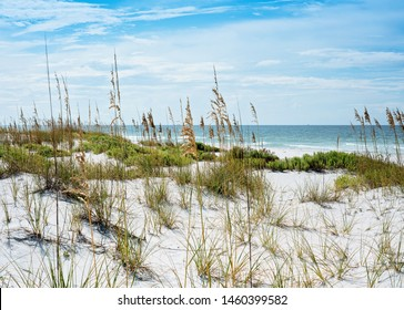 Sand dunes and sea oats at Florida Gulf of Mexico beach on sunny summer day along sparkling ocean in the background.
