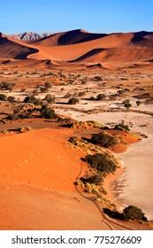 Sand Dunes at Sossusvlie in the Namib-nuakluft Desert in Namibia