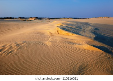 Sand dunes at sunset on the Curonian Spit in the Kaliningrad region, Russia