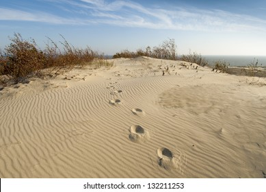 Sand dunes viewpoint at Curonian Spit in Lithuania