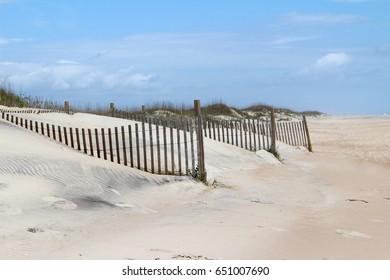 Sand fences on the beach