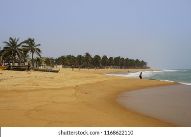 Sand and palm trees on the beach of baguida in togo on a sunny sunday