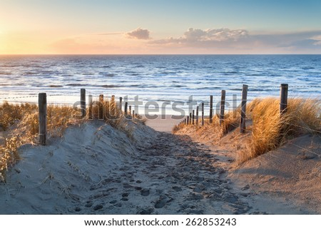sand path to North sea coast at sunset, Holland