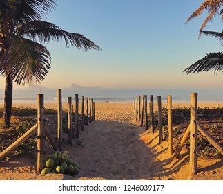 Sand road surrounded with wood fence and palm trees going to the beach, ocean in Praia de Ipanema, Ipanema Beach Rio de Janeiro Brazil.