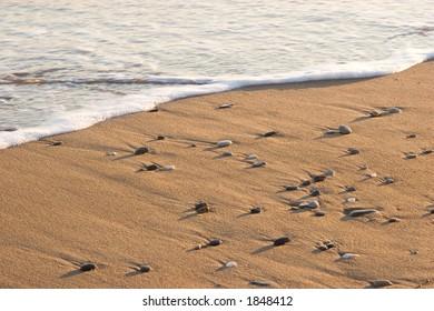 sand and sea stones on a beach