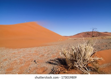sand storm and red dune in the namibian Namib desert, Naukluft Park, Namibia, Africa