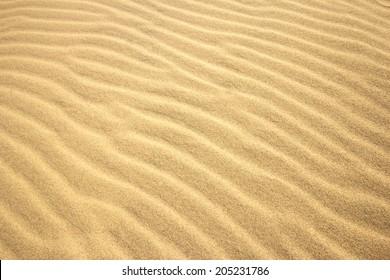 Sand Texture Close Up.