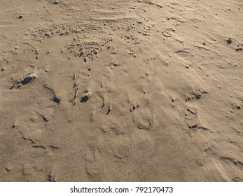 Sand Waves Texture Background