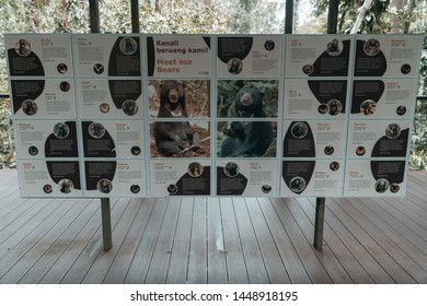 SANDAKAN, SABAH - June 24, 2018 : The new signage or signboard of education in observation platform of Bornean Sun Bear Conservation Centre in Sepilok, Sandakan. Sabah Borneo. Malaysia