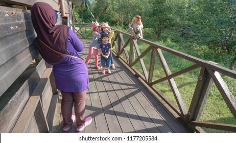 Sandakan Sabah Malaysia - Sep 10, 2018 : Tourist at Labuk Bay Proboscis Monkey Sanctuary in Sandakan Sabah. Sandakan is well known for its nature and wildlife tourism.