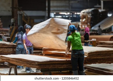 Sandakan, Sabah - March 28 2016: Plywood Factory; sheets of veneers sorted after leaving the CHIN HSIANG continuous dryer