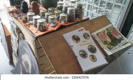 SANDAKAN, SABAH - Sept 17, 2018 : Some of item displays and information centre of Bornean Sun Bear Conservation Centre in Sepilok, Sandakan. Sabah Borneo