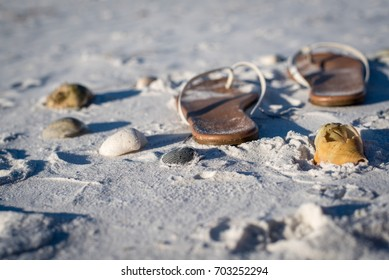Sandals and Shells on the Sandy Beach