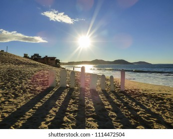 Sandboards against the sun at Ingleses beach - Florianopolis, Brazil